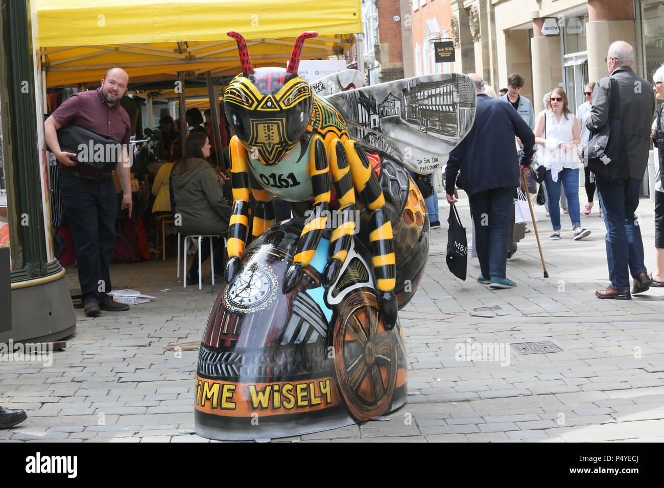 Manchester Bomb Bee Stock Photos & Manchester Bomb Bee Stock Images