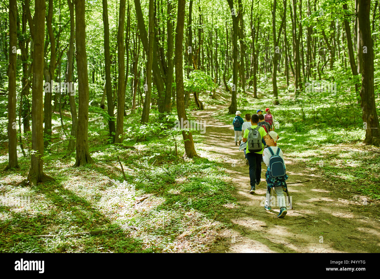 Kids on a field trip in forest - Stock Image