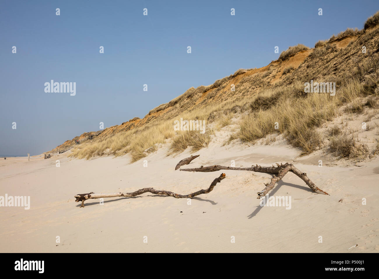 Germany, Schleswig-Holstein, North Frisian Islands, Sylt, beach at Rotes Kliff - Stock Image