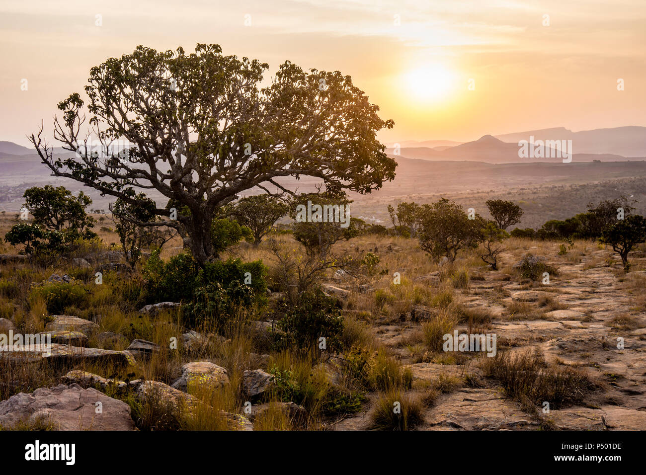 Africa, South Africa, Mpumalanga, Panorama Route, Blyde River Canyon Nature Reserve at sunset - Stock Image