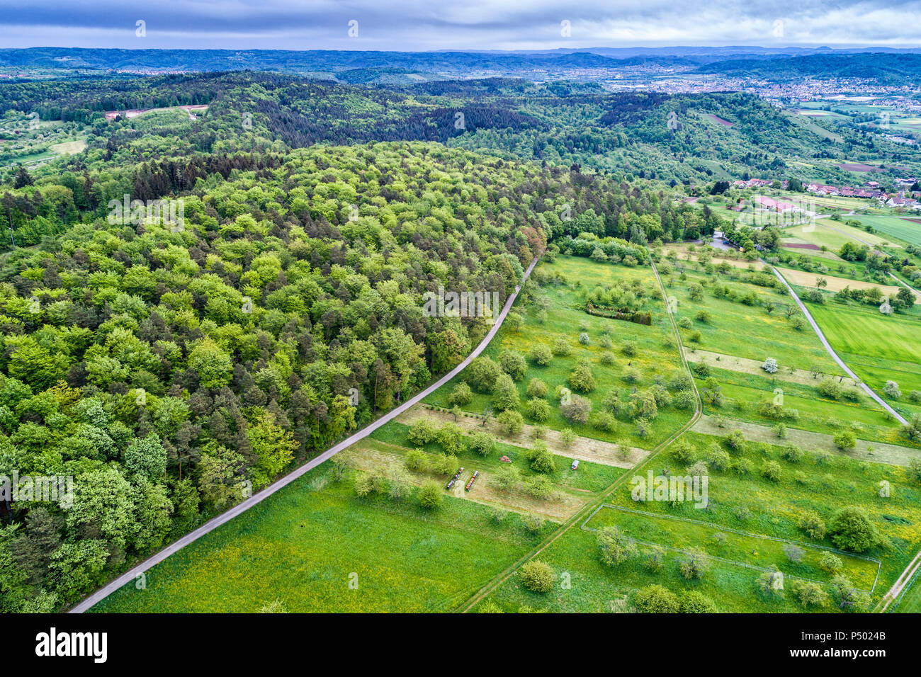Germany, Baden-Wuerttemberg, Swabian Franconian forest, Rems-Murr-Kreis, Aerial view of meadow with scattered fruit trees and roads - Stock Image