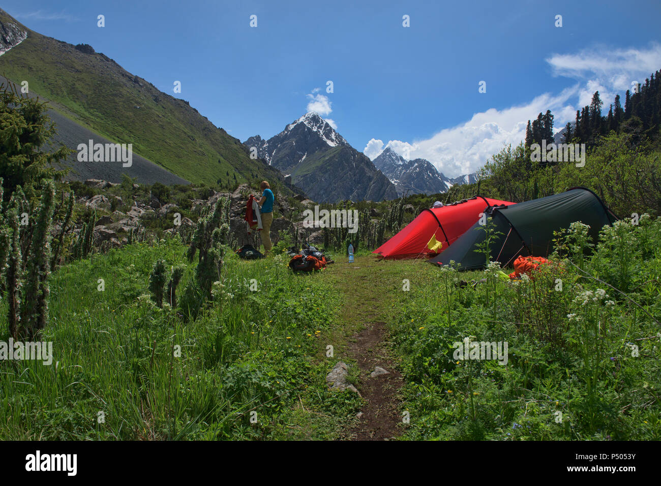 Colorful alpine camp in the Tian Shan Mountains, Karakol, Kyrgyzstan - Stock Image