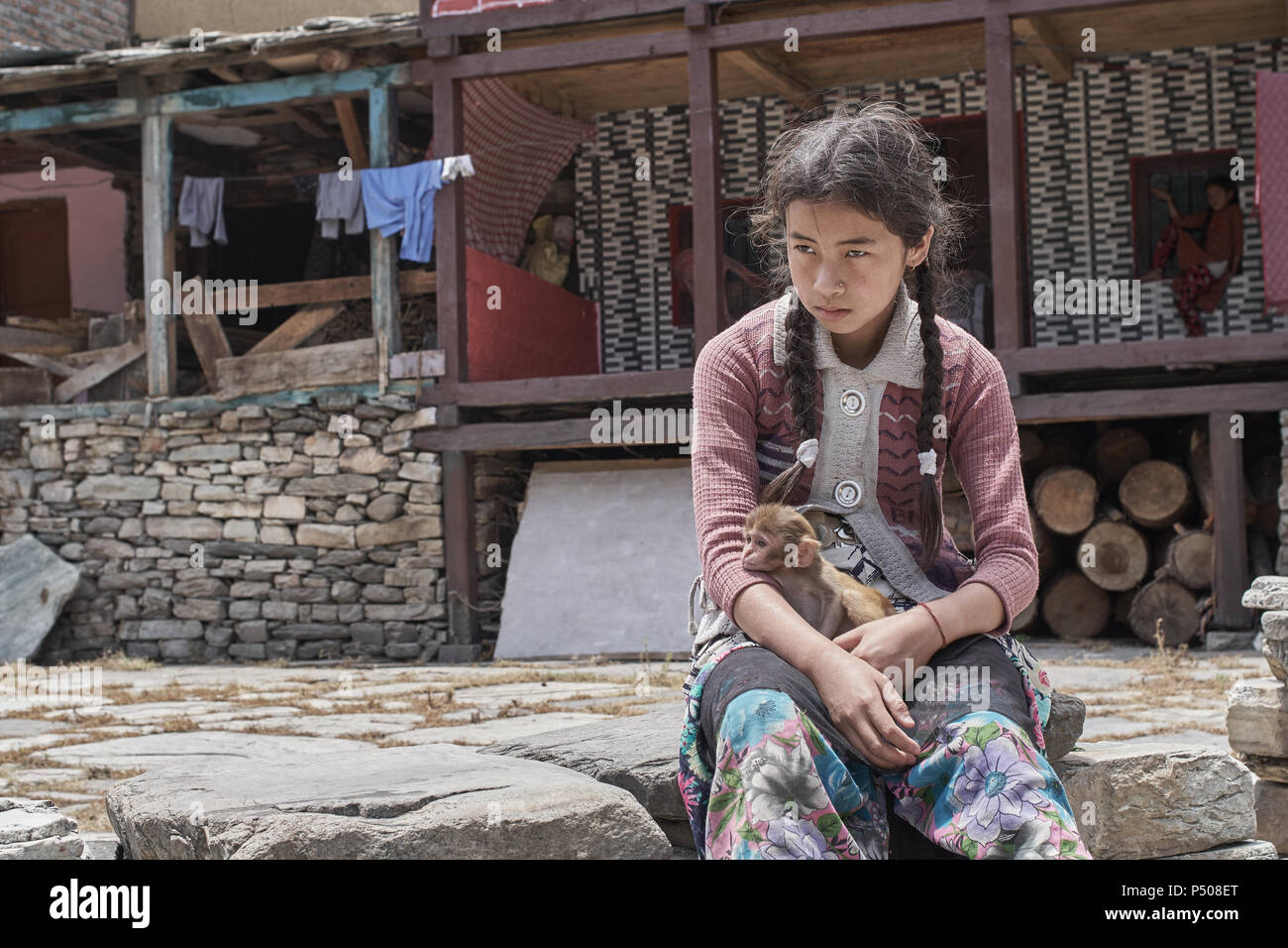 A girl from Himachal Pradesh has a baby orphaned baby monkey that she sits with in her village outside Kasol, India, on a cool summer afternoon. - Stock Image