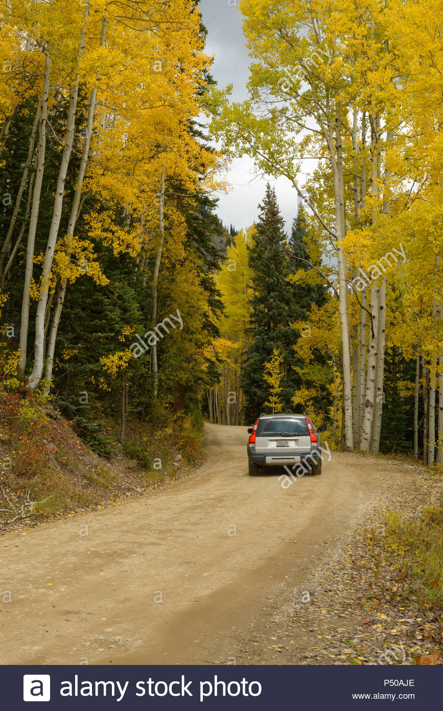 A silver car travels a Colorado country road at the peak of fall color. - Stock Image