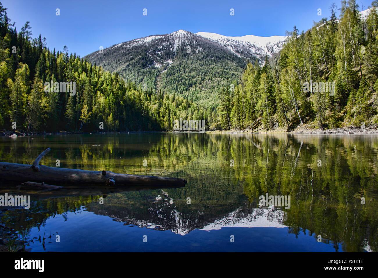 Kanas River at Kanas Lake National Park, Xinjiang, China Stock Photo