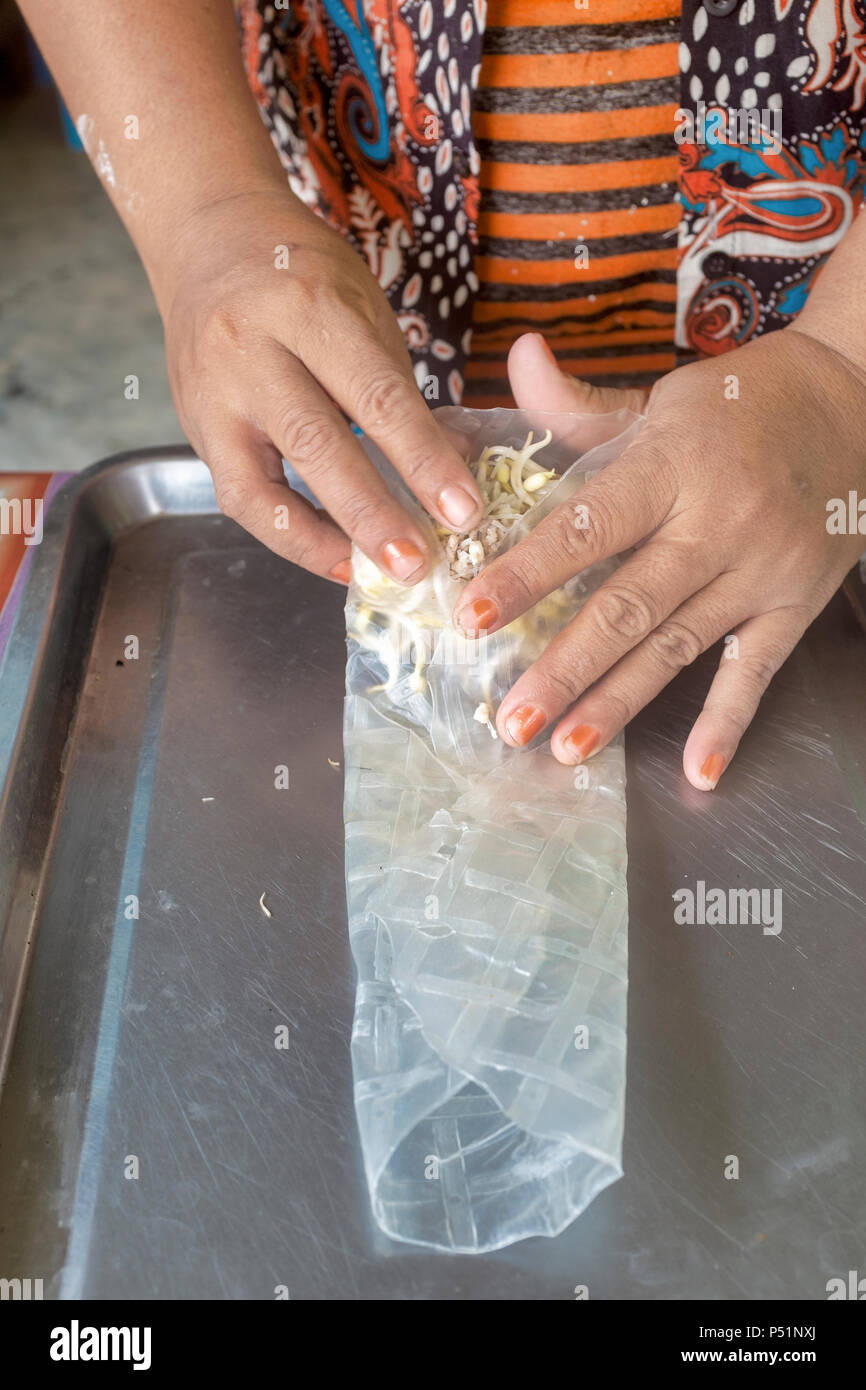 Making non fried cambodian spring roll with rice paper - Stock Image