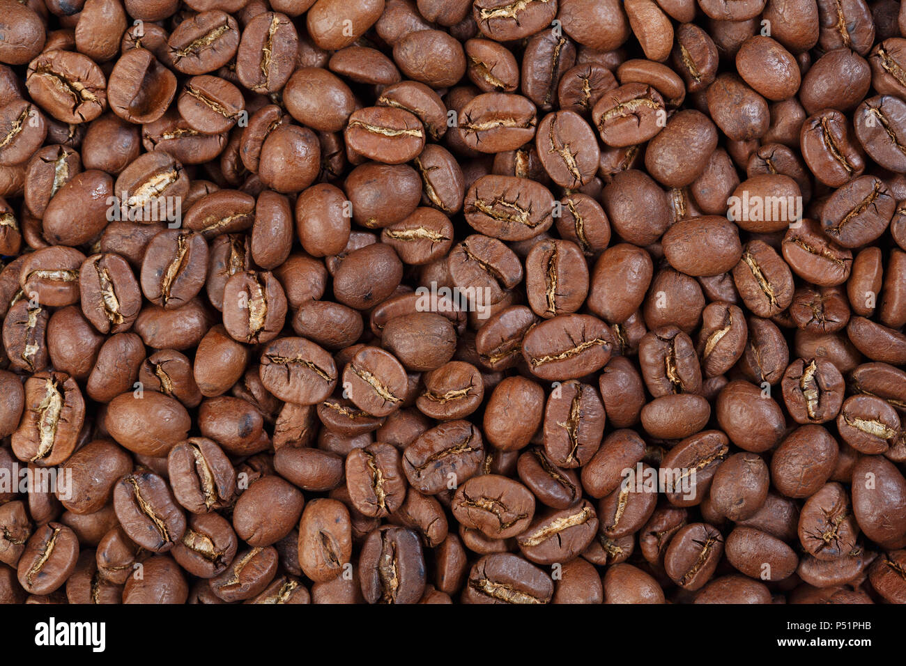Texture of Nicaragua Coffee beans gourmet coffee . - Stock Image