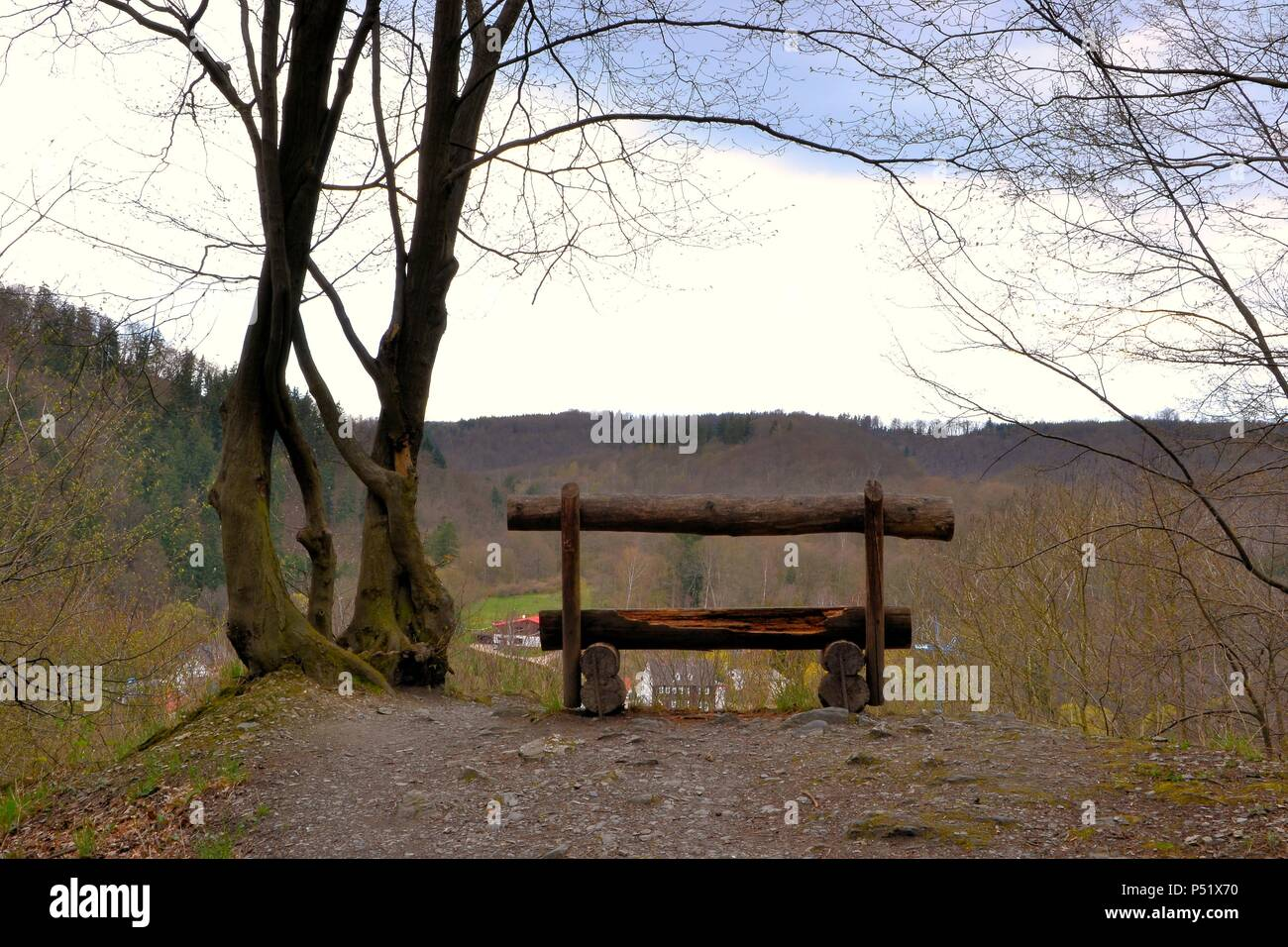 Bench on a hiking trail in the Harz National Park - Stock Image