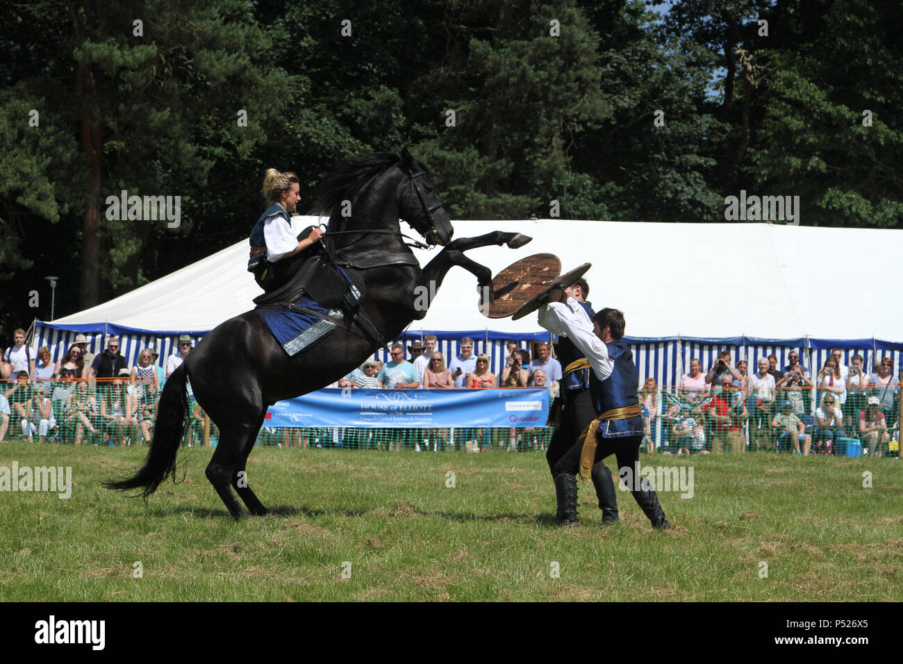 Yorkshire, UK. 24 June 2018. Huby and Sutton Agricultural Show North Yorkshire - Atkinson Action Horses Display Team Credit: credit: Matt Pennington / PennPix/Alamy Live News - Stock Image