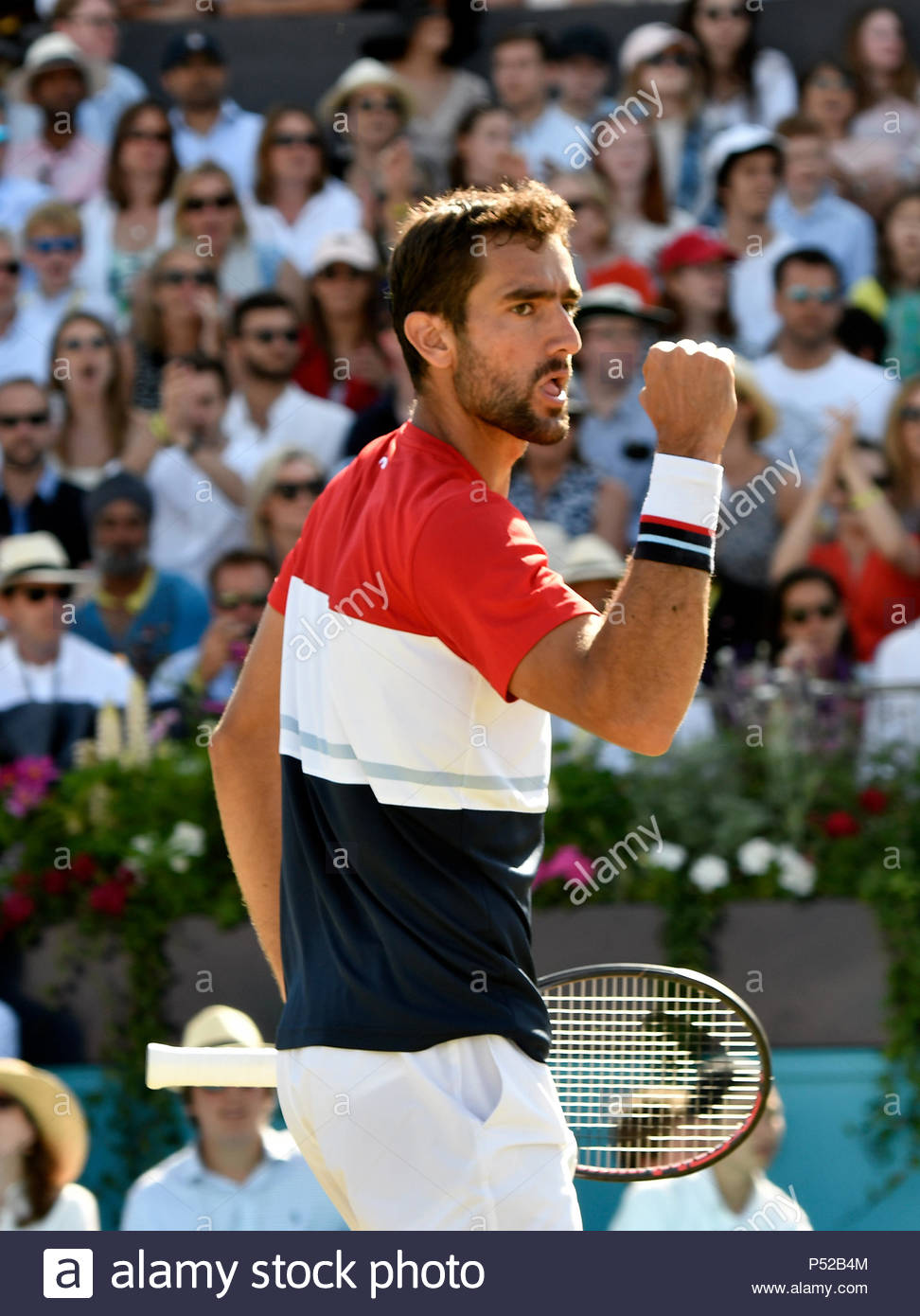 London, UK. 24 June 2018. Fever-Tree Championships Queens Club London UK FINAL: Marin Cilic CRO v Novak Djokovic SRB Cilic in action during the final which he won in 3 sets Credit: Leo Mason sports photos/Alamy Live News - Stock Image