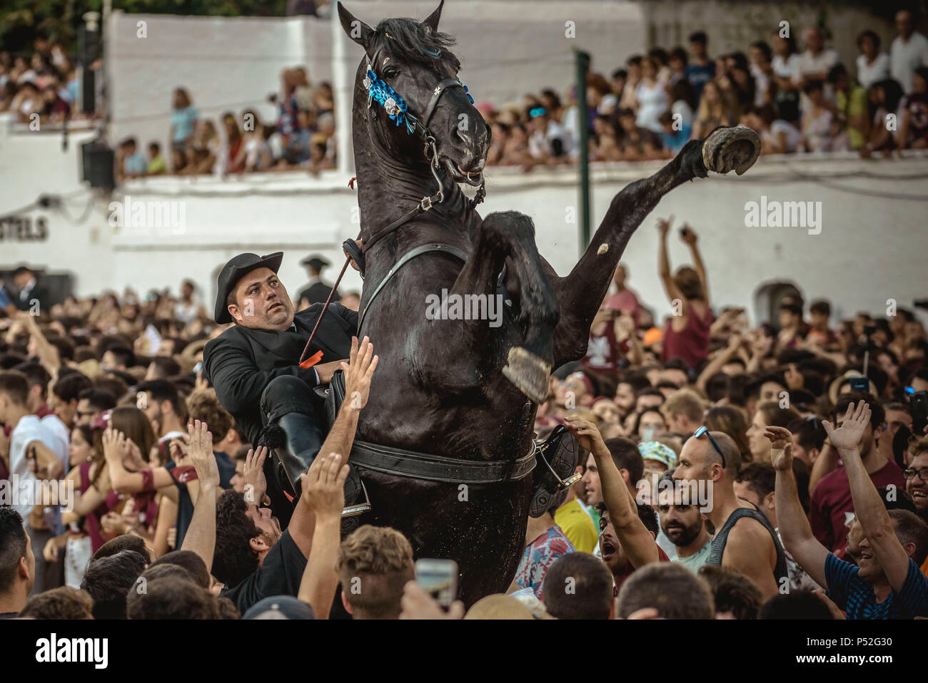 Ciutadella, Spain. 24 June, 2018:  A 'caixer' (horse rider) rears up on his horse surrounded by a cheering crowd at the beginning of the 'Jocs des Pla' (medieval tournament) during the traditional 'Sant Joan' (Saint John) festival in Ciutadella de Menorca Credit: Matthias Oesterle/Alamy Live News - Stock Image