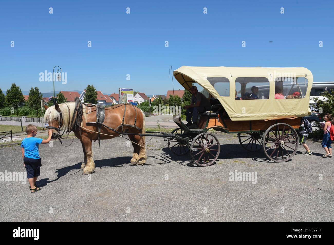 June 30, 2015 - Ungersheim, France: Schoolchildren take a horse-drawn carriage in Ungersheim. This small Alsacian village (population: 2000) is known as the greenest village in France because of its various environment-friendly initiatives: construction of a solar power plant, use of municipal agricultural land to promote local organic food, horse transport for school children, pesticide-free green spaces, eco-lodging, wood heating, etc. Ungersheim is part of the transition network, an international association promoting measures towards climate change adaptation, especially energetic and alim - Stock Image