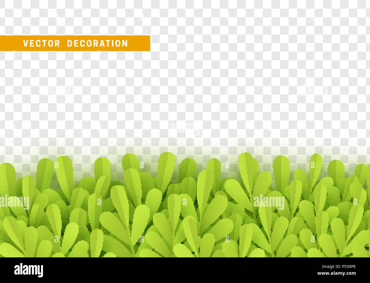 grass border no background green grass grass shape plant leaves border isolated with transparent background vector illustration stock grass border cut out images alamy
