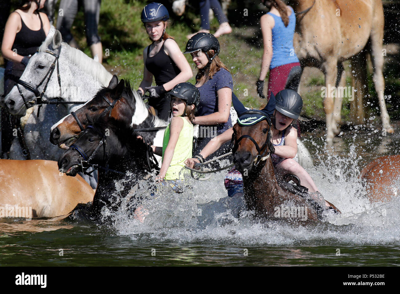 Oberoderwitz, Saxony, Germany - Girls jump from their horses into a lake, the horse has much more fun swimming like the rider - Stock Image