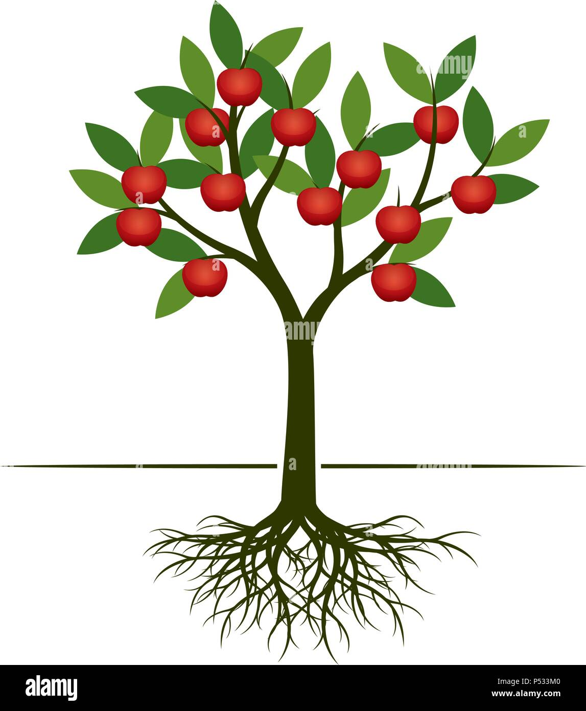 Green Apple Tree With Red Apple Fruits Vector Illustration Stock