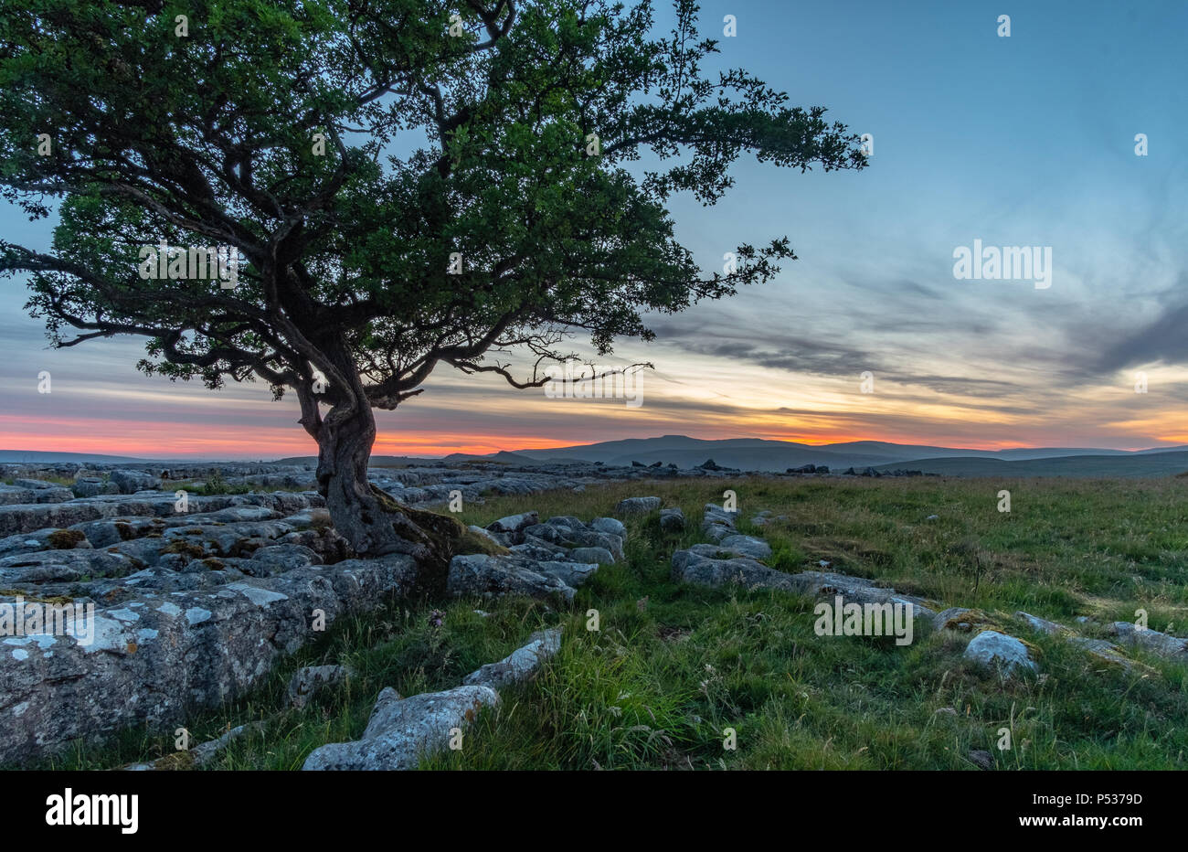 Incredible post-sunset light at the stunning Winskill Stones in the Yorkshire Dales National Park - Stock Image