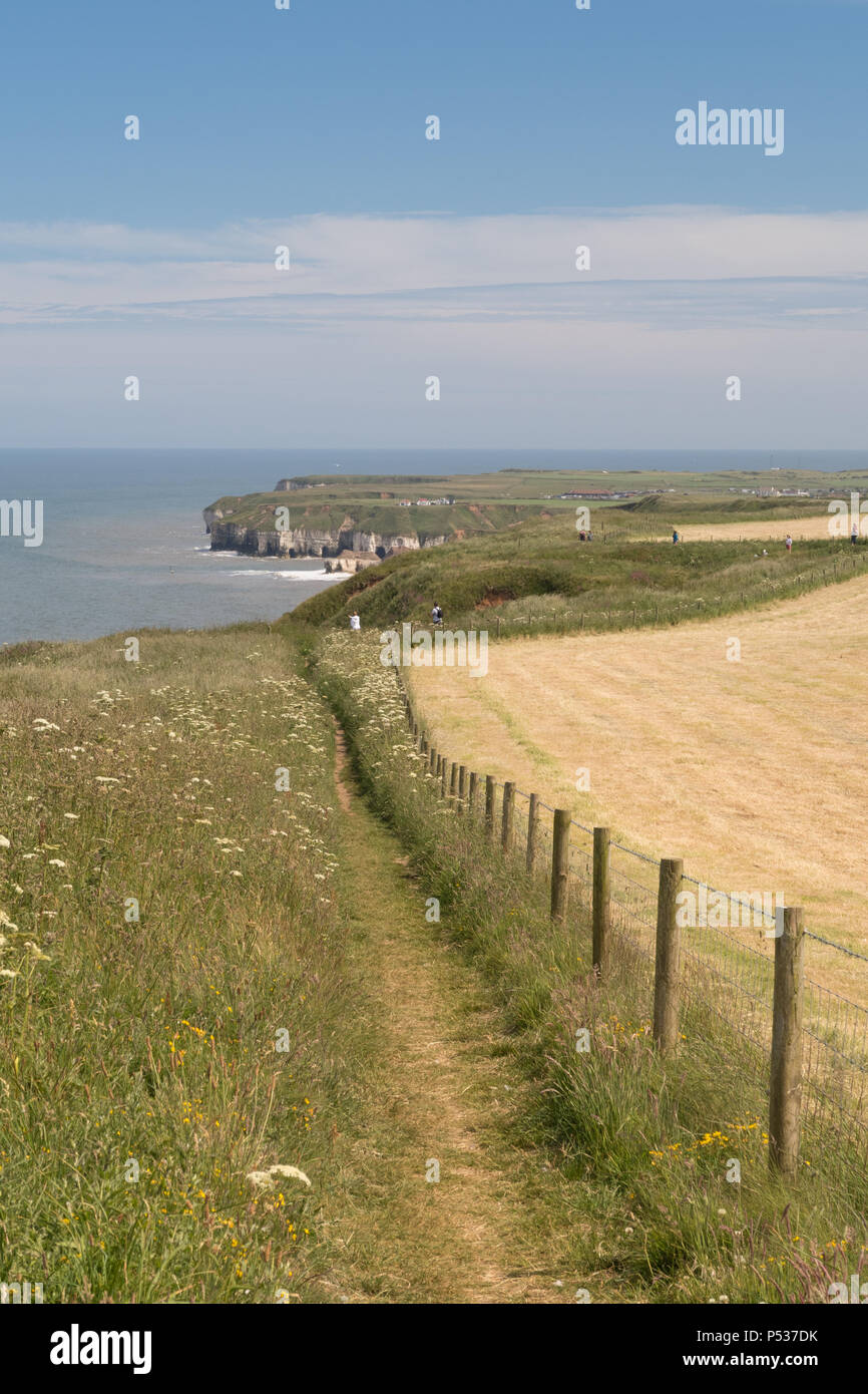 The cliff-top footpath along North Cliff above Thornwick Bay on the East Yorkshire coast Stock Photo