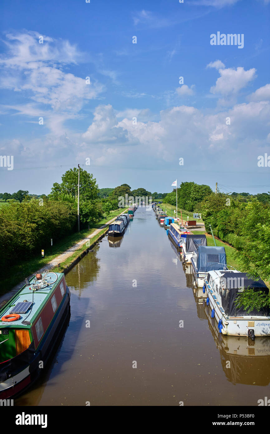 The Middlewich branch of the Shropshire Union canal viewed from Barbridge - Stock Image