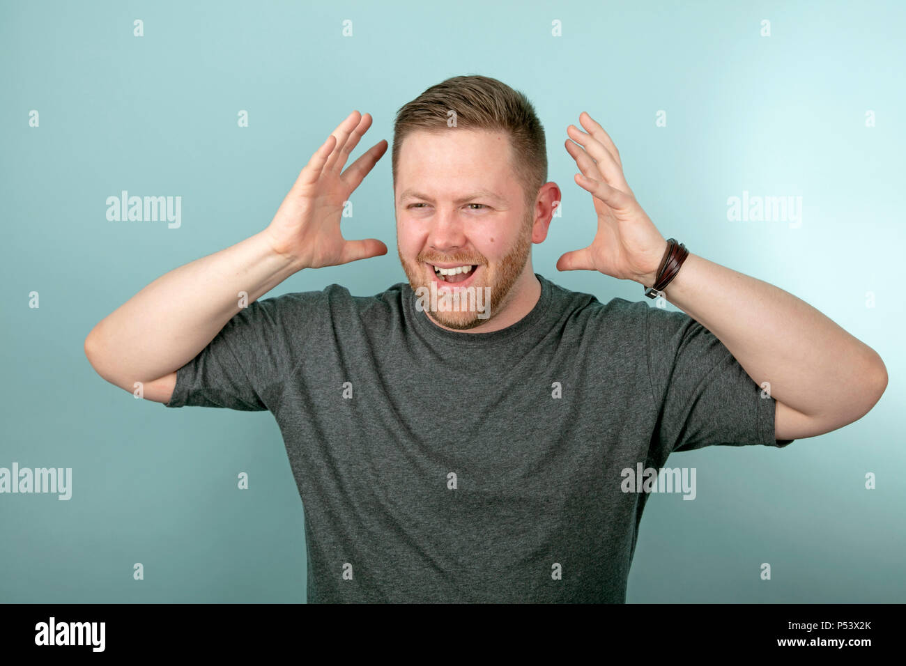 Frustrated angry man snarling and gesturing with his hands either side of his head over a grey background - Stock Image