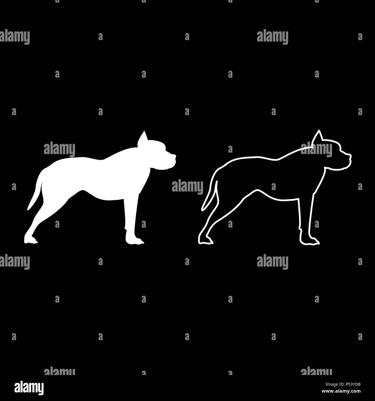 Pit bull terrier icon set white color vector I flat style simple image Stock Vector