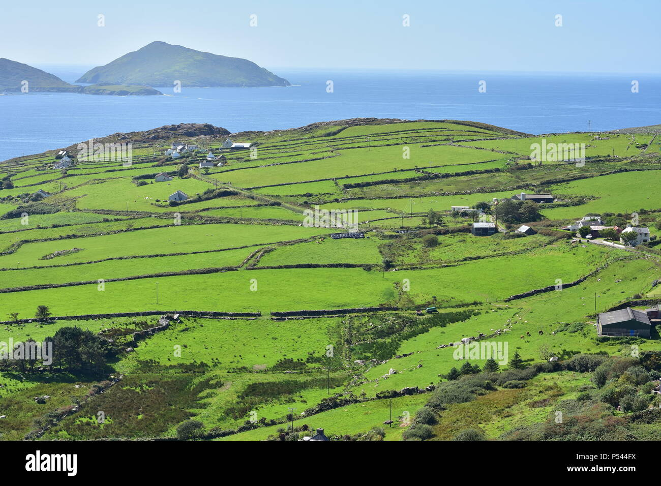 Summer green fields of west coast of Ireland with Atlantic ocean in background. Landscape view. - Stock Image