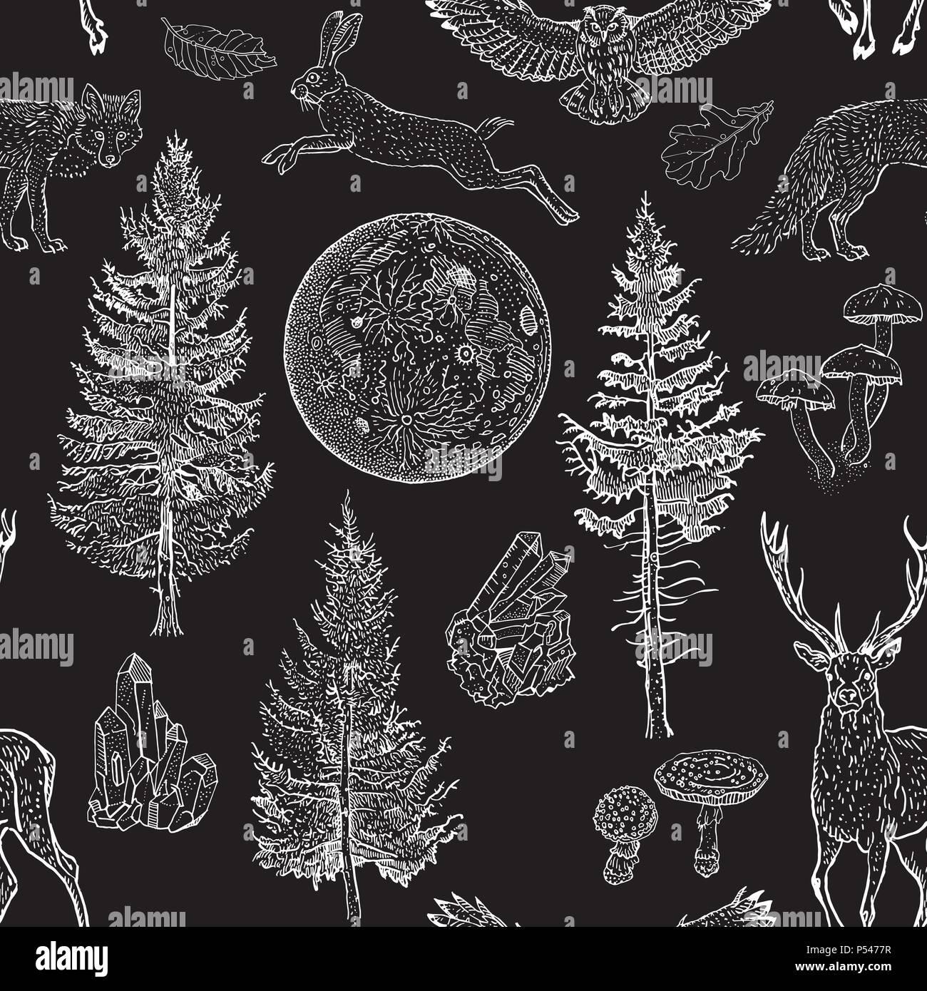 Full Moon Magic Seamless Pattern Spruce Fir Tree Mushrooms Fox