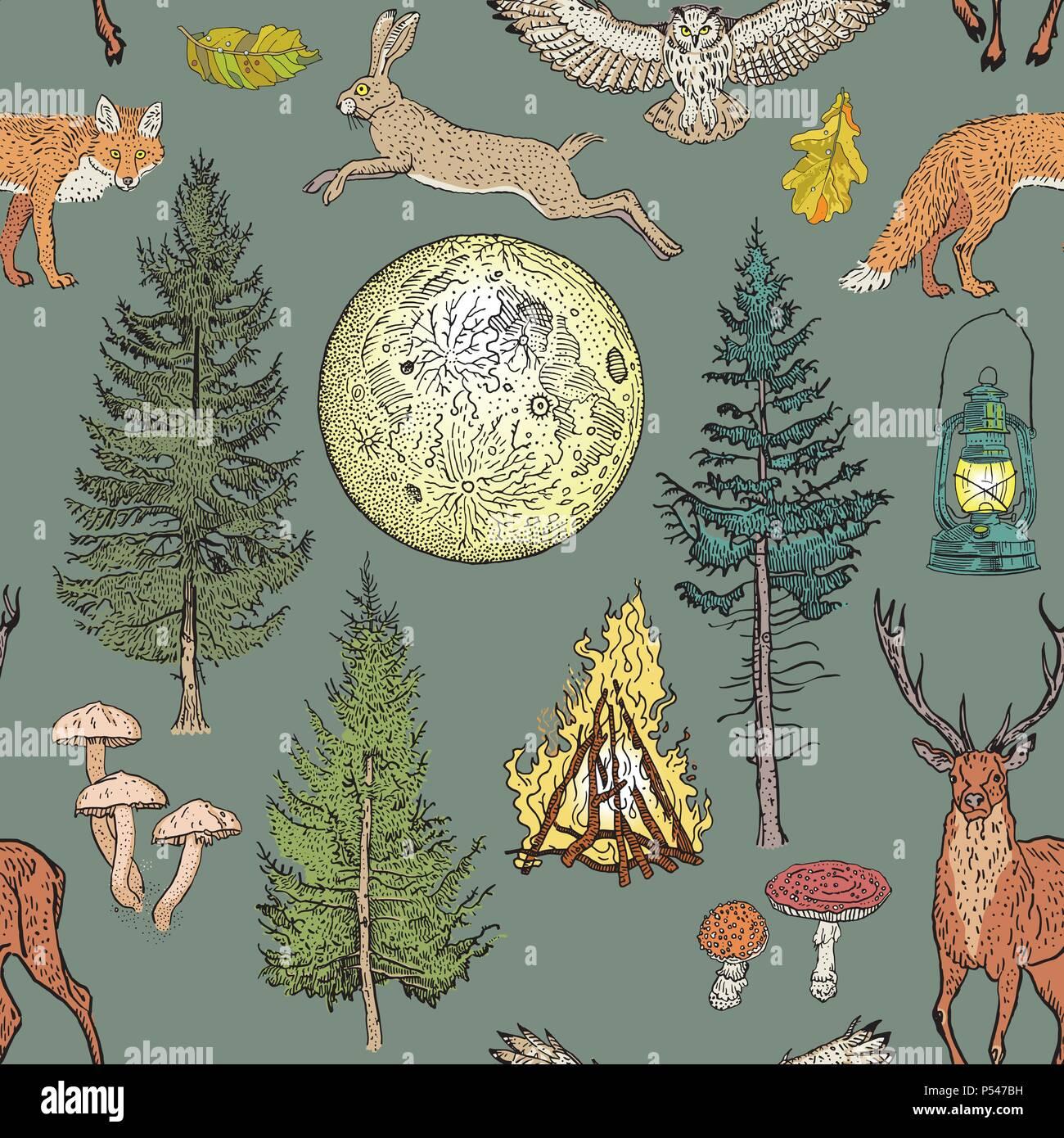 Forest adventure magic seamless pattern: bonfire, camping lamp, full moon, spruce, fir tree, mushrooms, fox, hare, deer, owl. Khaki, green, beige, brown, yellow, orange nature colors. - Stock Vector