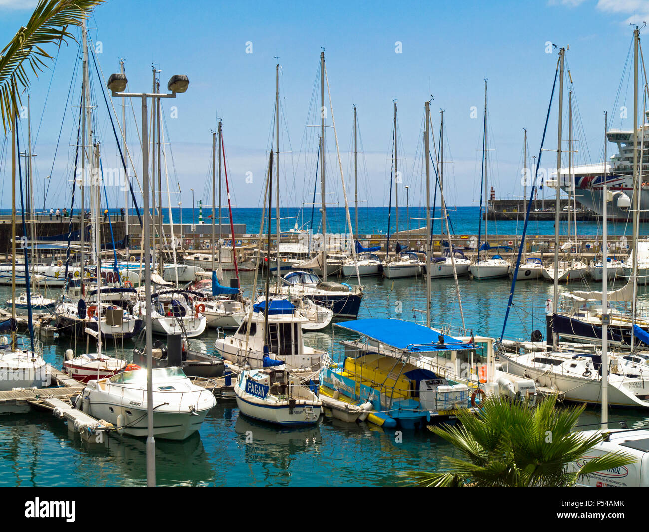 yachts in Funchal marina, Madeira with P&O cruise lines Azura in the background - Stock Image