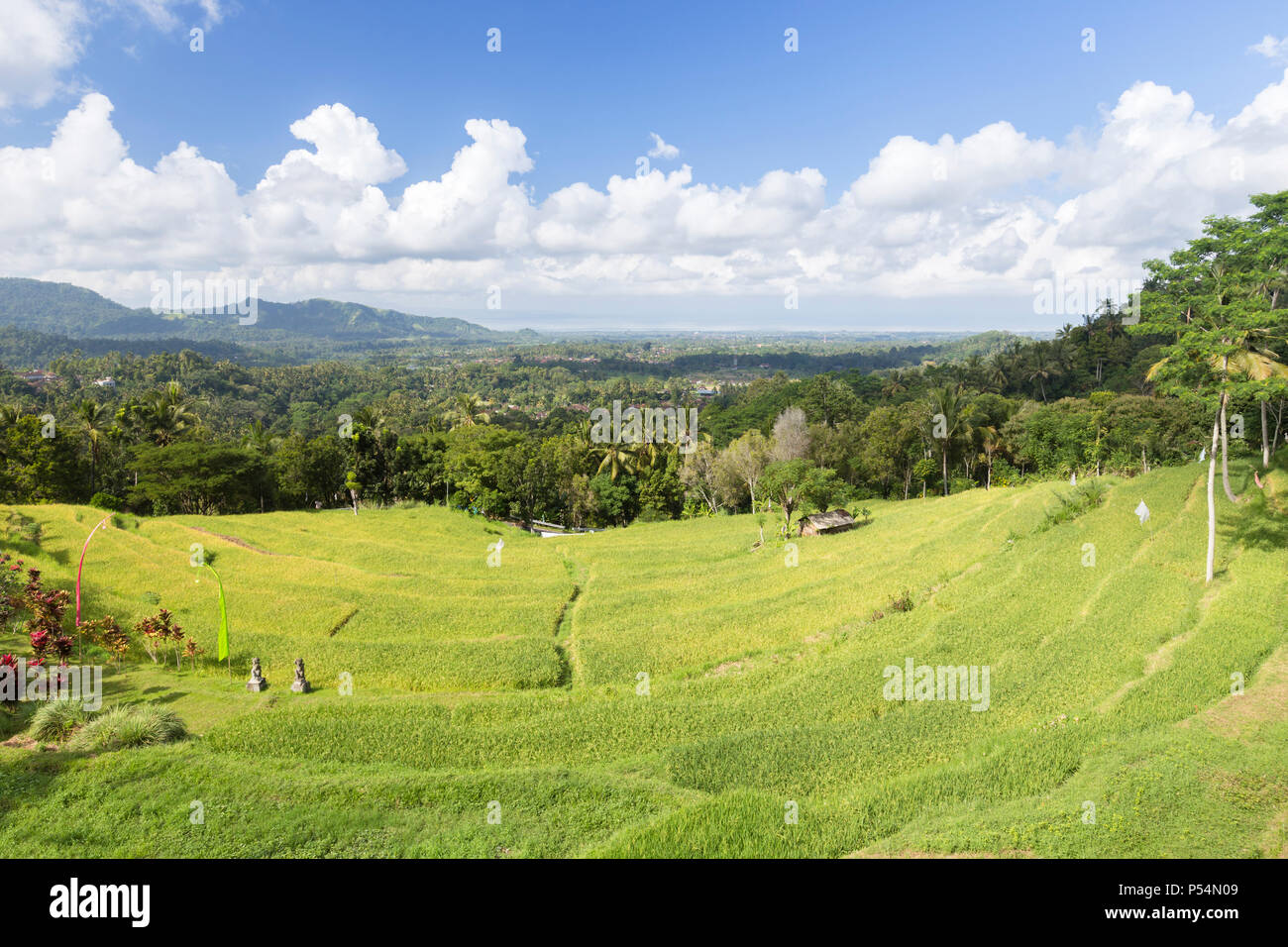 Sidemen, crescent of rice terraces on the road to Semarapura, Bali, Indonesia - Stock Image