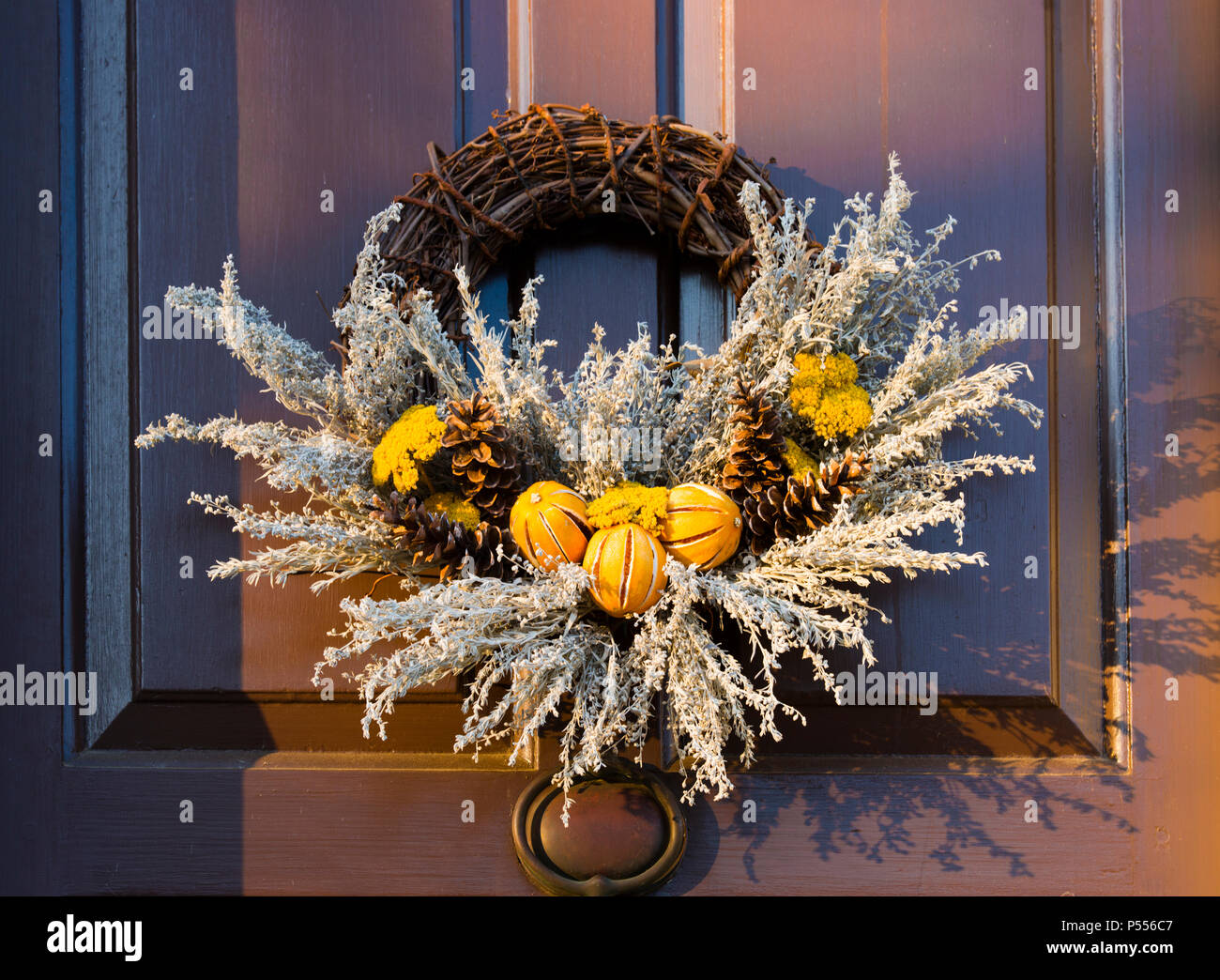 Split peel dried oranges and pine cones wreath on door. Entry in annual Christmas natural materials wreath competition in Colonial Williamsburg, VA. Stock Photo