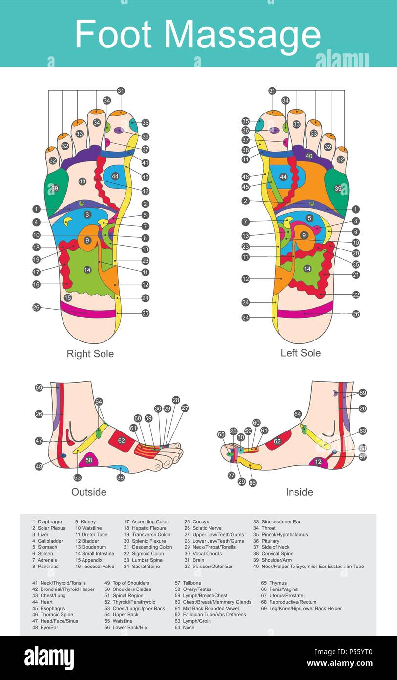 While various types of reflexology related massage styles focus on the feet, massage of the soles of the feet is often performed purely for relaxation - Stock Vector