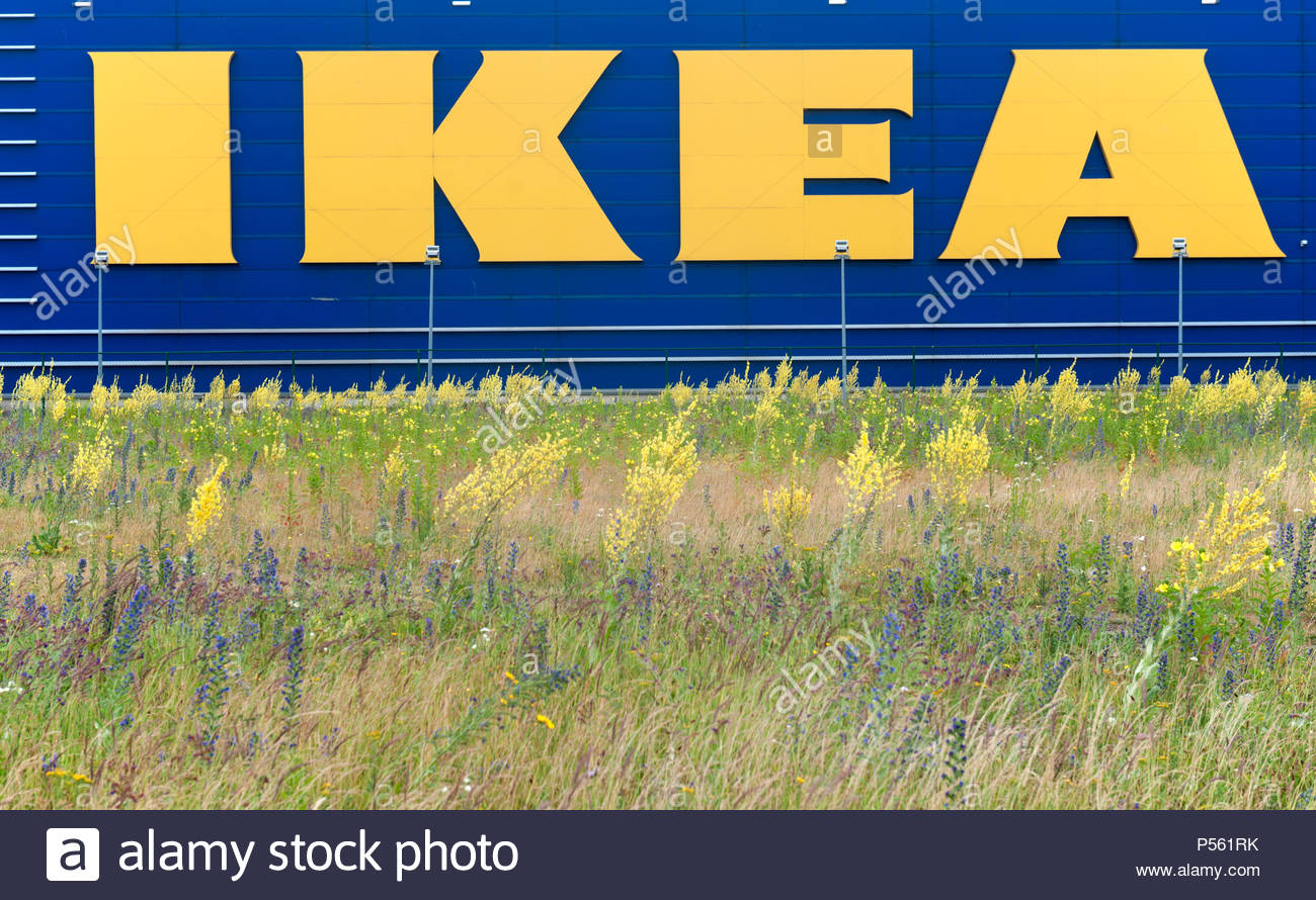 Haarlem The Netherlands Ikea Shop Logo With A Field Of Flowers