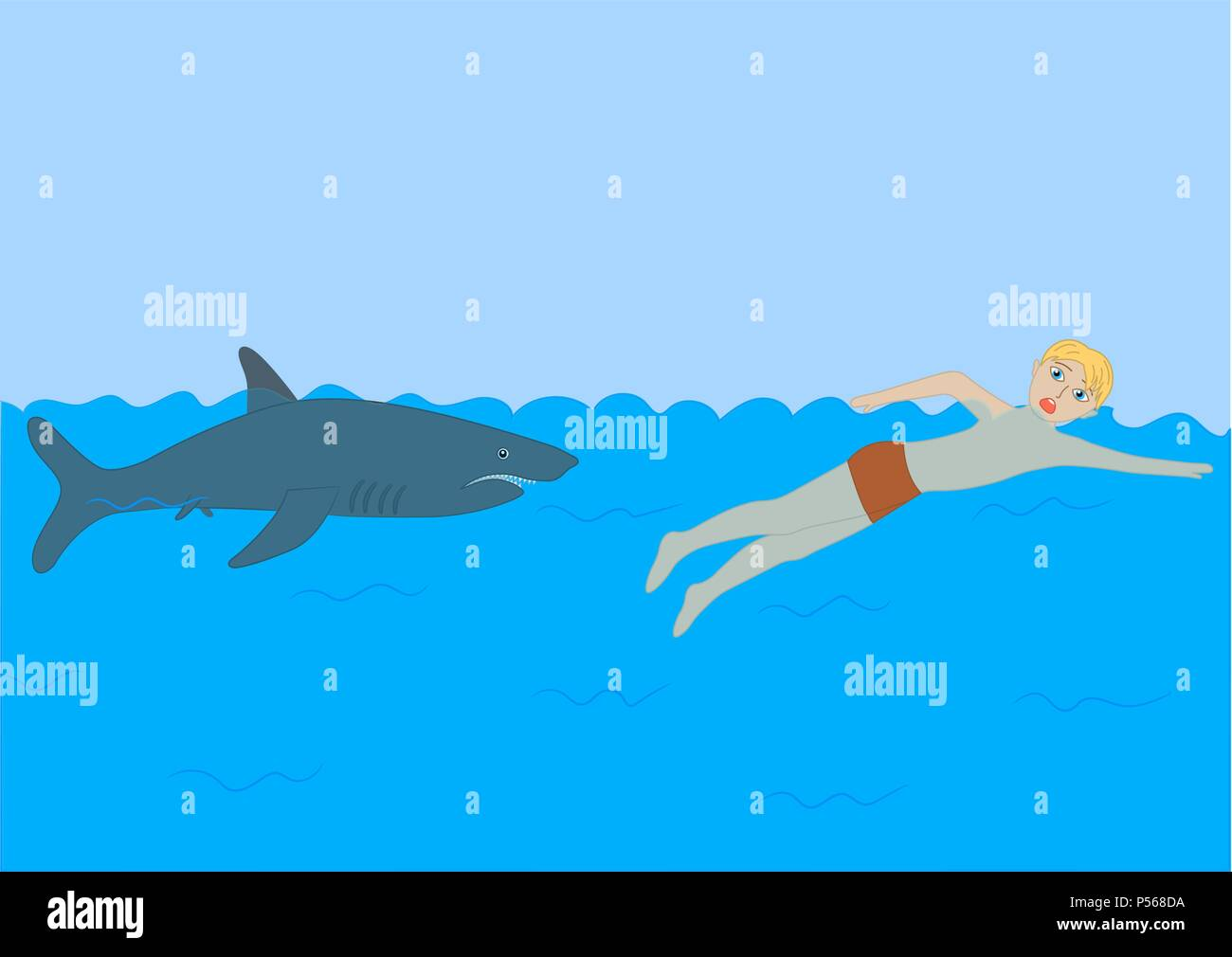 Shark. Dangers in the sea for man. - Stock Image