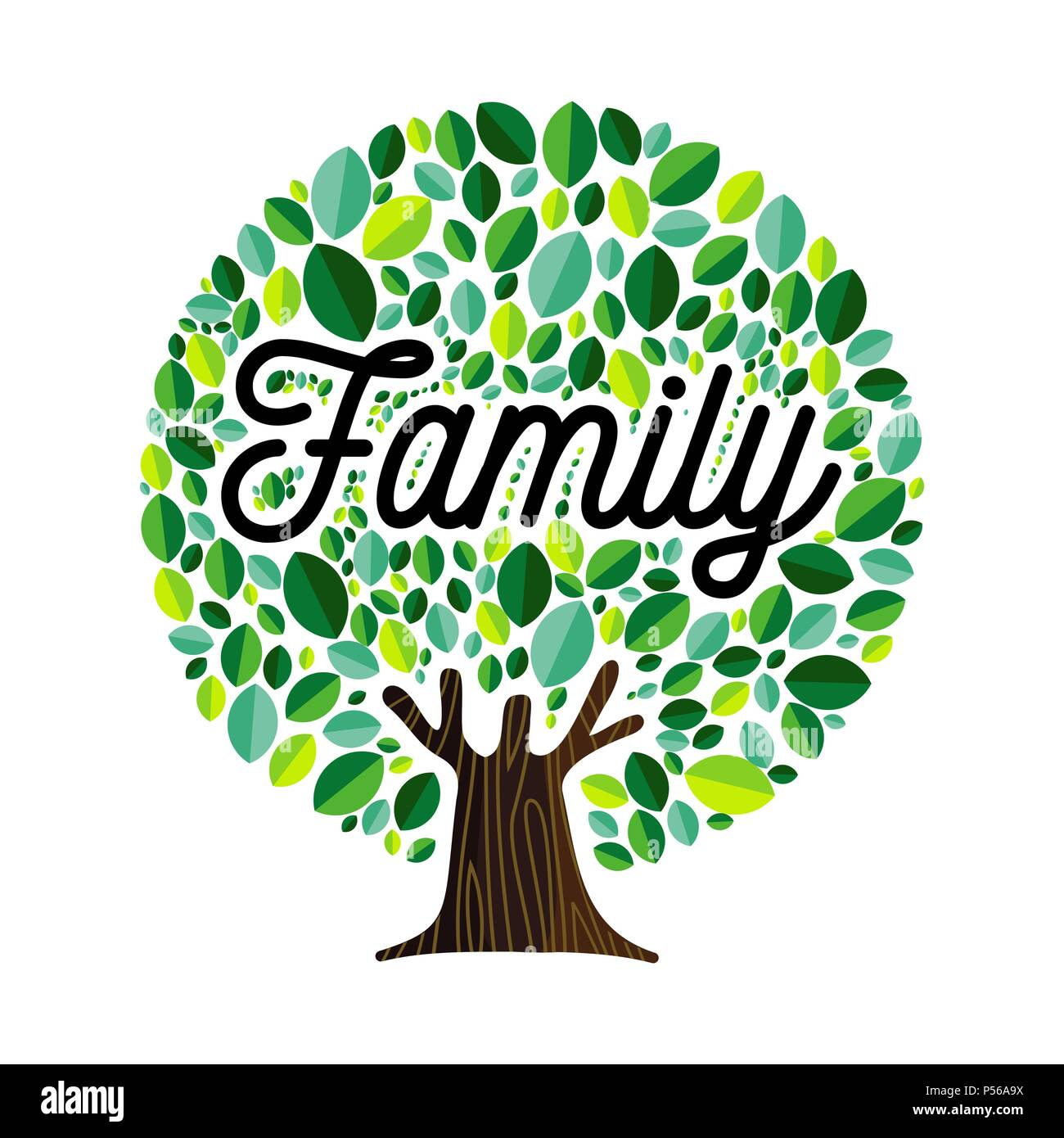 Family Tree Genealogy Illustration Cut Out Stock Images Pictures