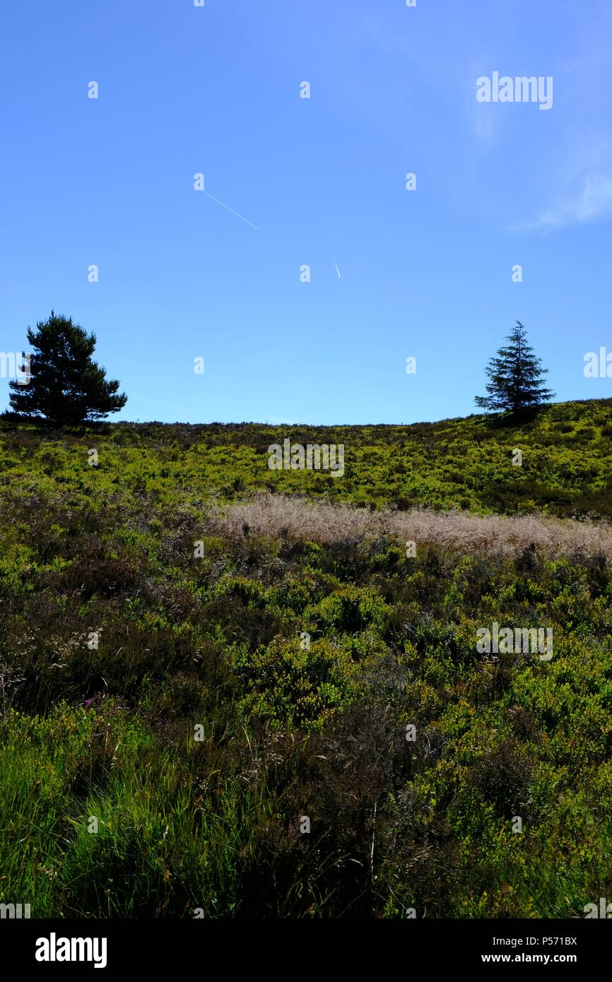 Welsh landscape - Stock Image
