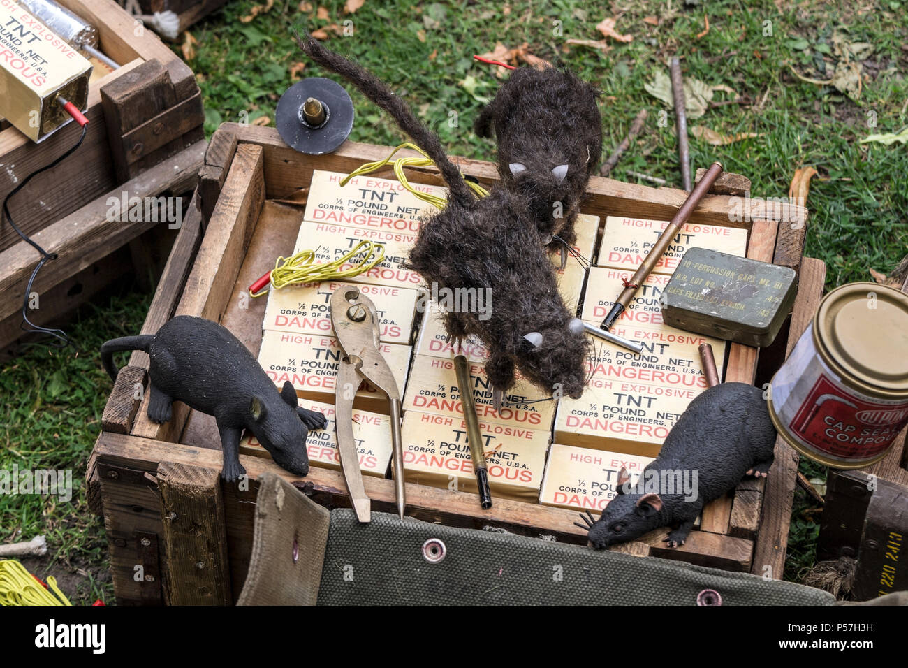 A Box of TNT with Rat Bombs on Top.  Rat Bombs Were Developed by the British Operations Executive in WW2 for Use Against the Germans. - Stock Image