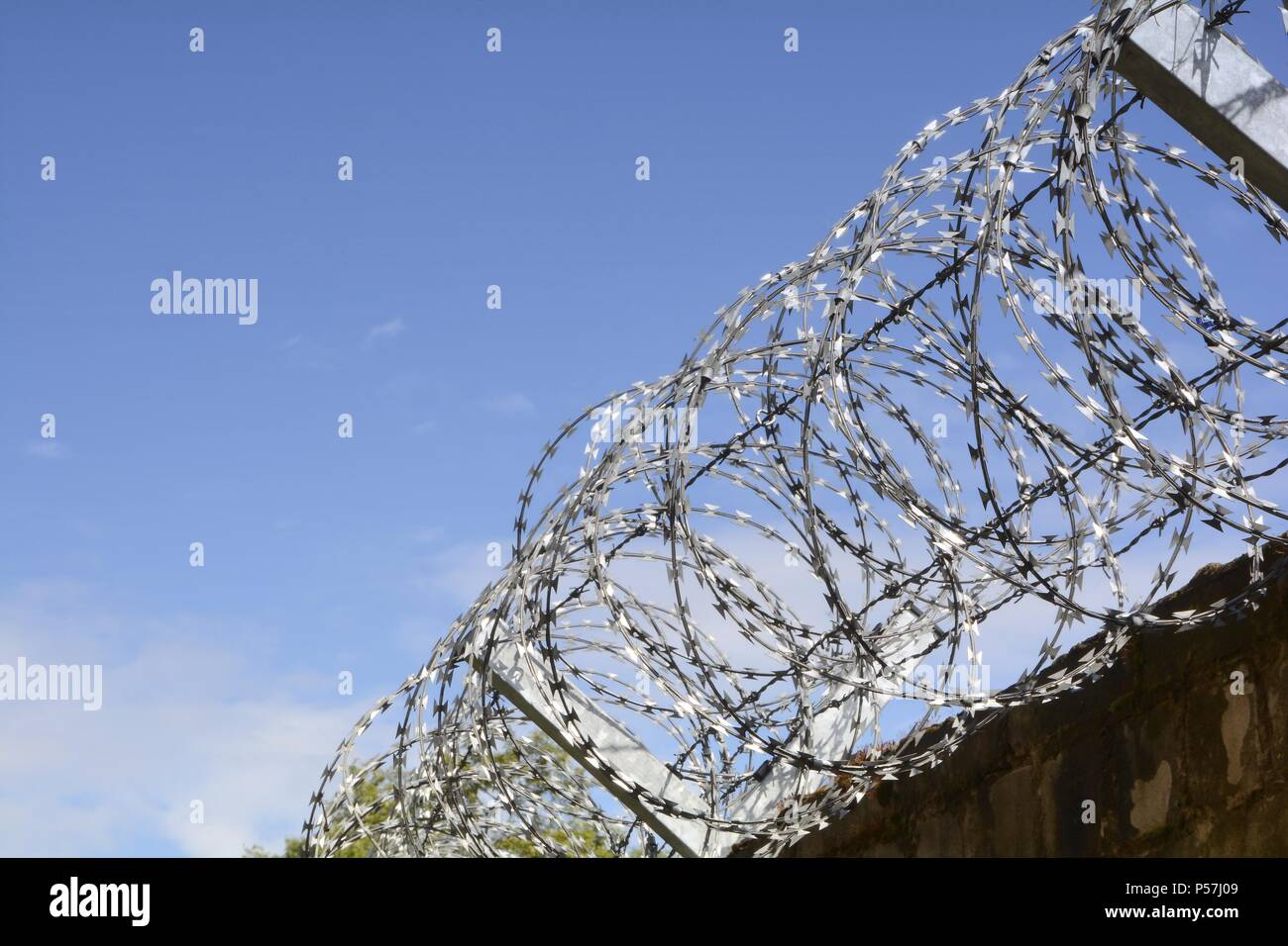 Barbed wire on a fence - Stock Image