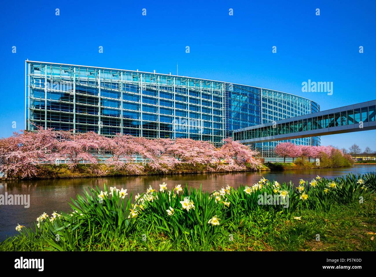 Strasbourg, European Parliament, Louise Weiss building, Ill river, Alsace, France, Europe, - Stock Image