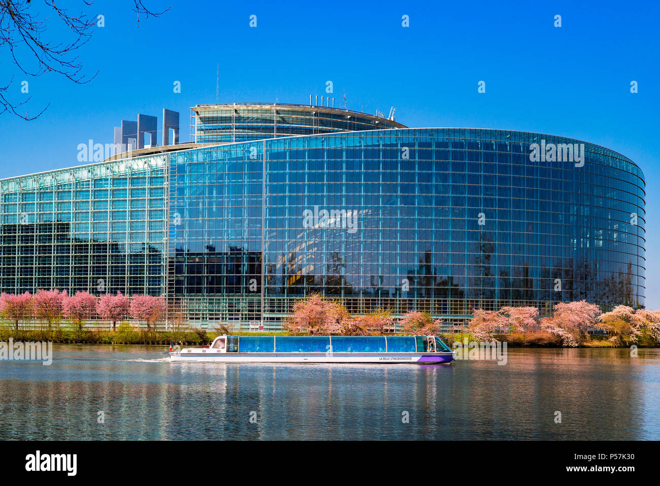 Strasbourg, European Parliament, Louise Weiss building, sightseeing tour boat, cherry blossoms, Ill river, Alsace, France, Europe, - Stock Image