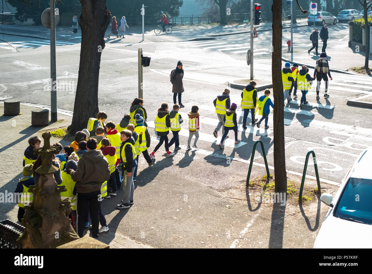 Strasbourg, young schoolchildren wearing yellow hi-vis jackets crossing street on pedestrian crossing, Alsace, France, Europe, Stock Photo