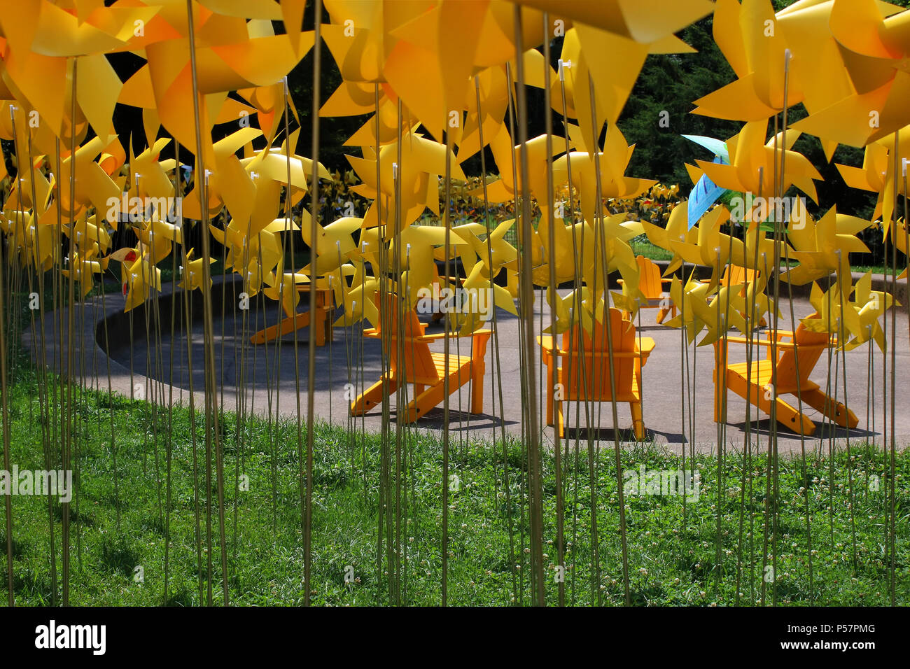 NEW YORK, NY - JULY 10: Yellow pinwheels placed in Prospect Park\'s ...