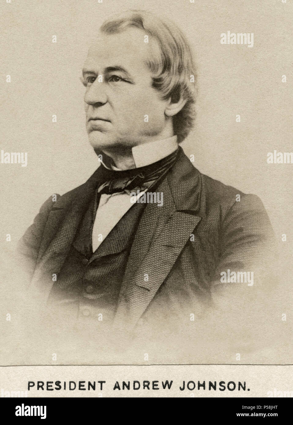 Andrew Johnson (1808-75), 17th President of the United States, Portrait, late 1860's - Stock Image