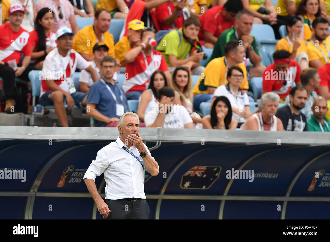 Bert VAN MARWIJK (coach, AUS), skeptical, gesture, Australia (AUS) - Peru (PER) 0-2, preliminary round, group C, game 38, on 06/26/2018 in SOCHI, Fisht Olymipic Stadium. Football World Cup 2018 in Russia from 14.06. - 15.07.2018. | usage worldwide - Stock Image
