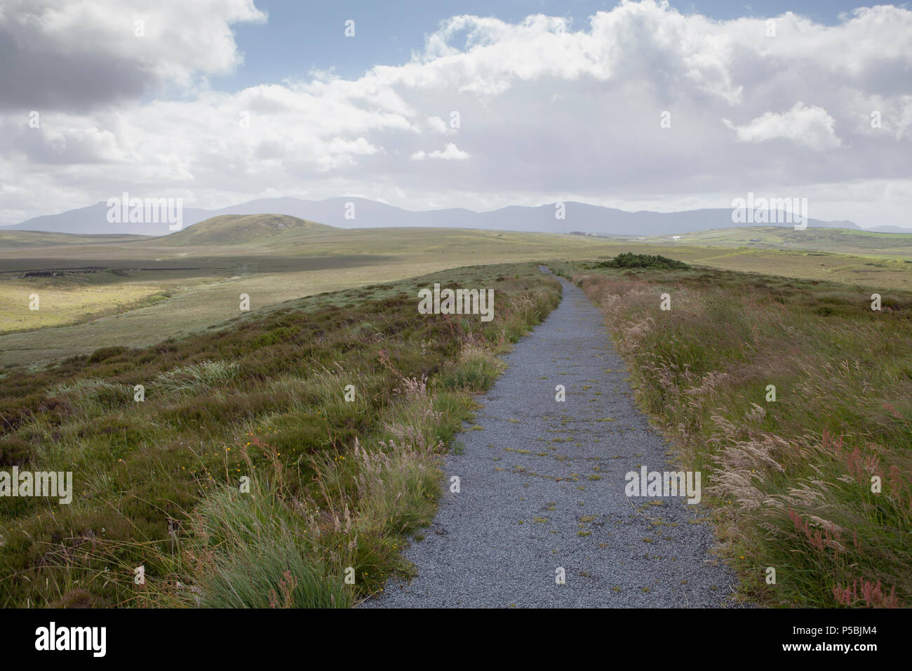 Views of the Nephin Beg Mountain range from the looped walk at the Visitor Centre at Ballycroy National Park in County Mayo, Ireland - Stock Image