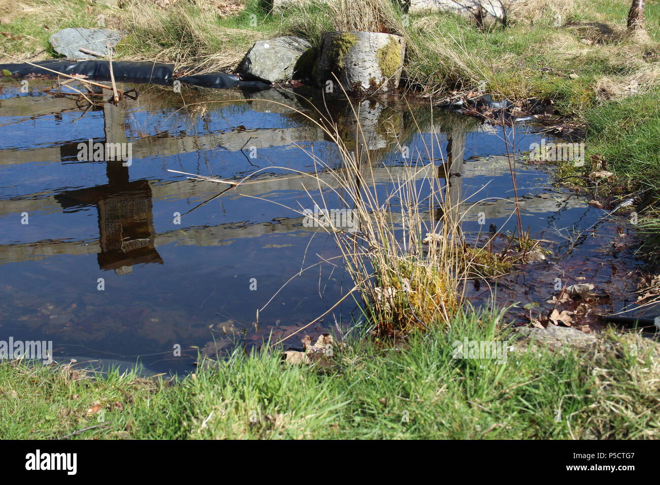 fence reflected in a pond, Elan Valley, Powys, Mid Wales, UK - Stock Image