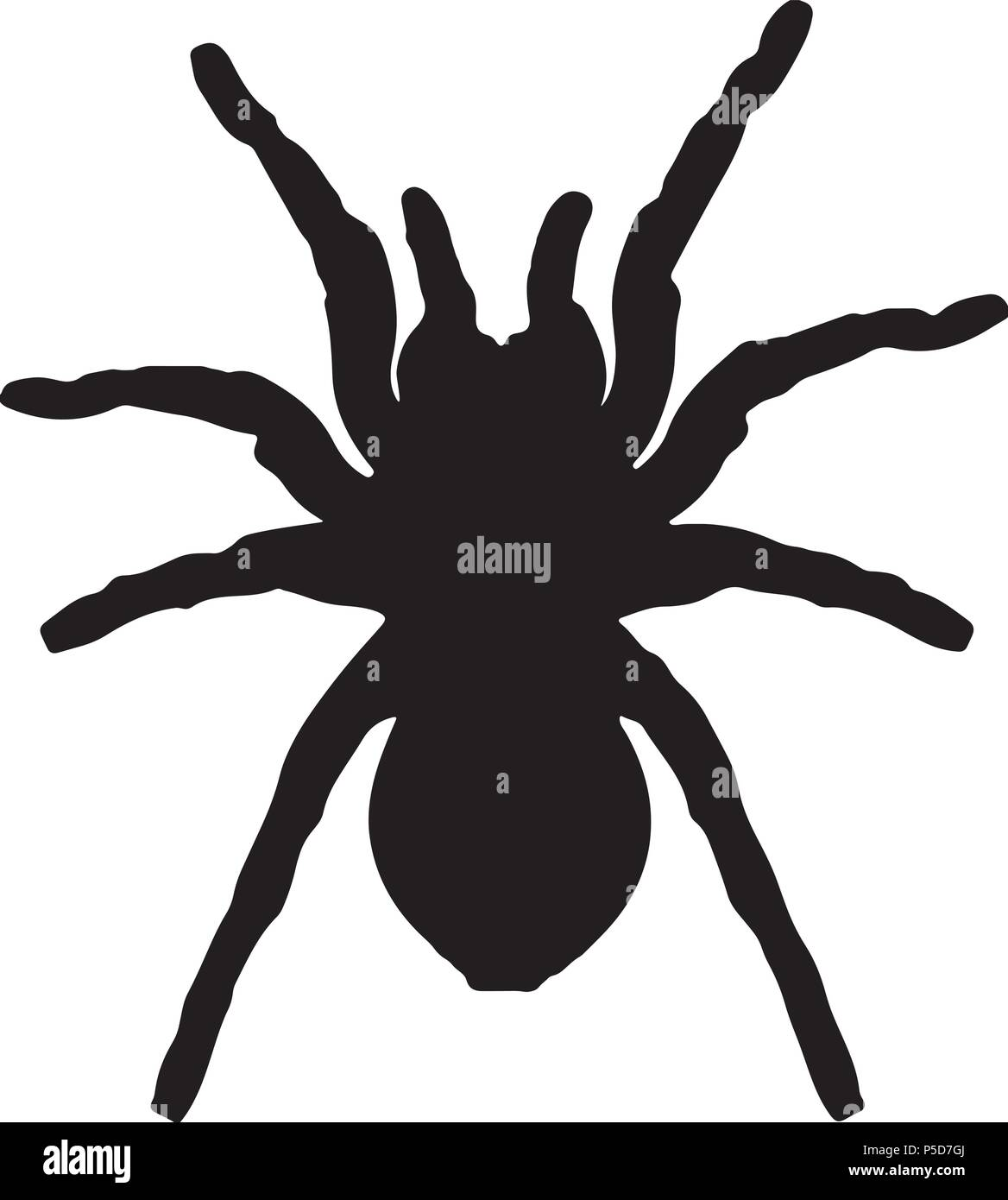 Vector silhouette of a black spider - Stock Vector