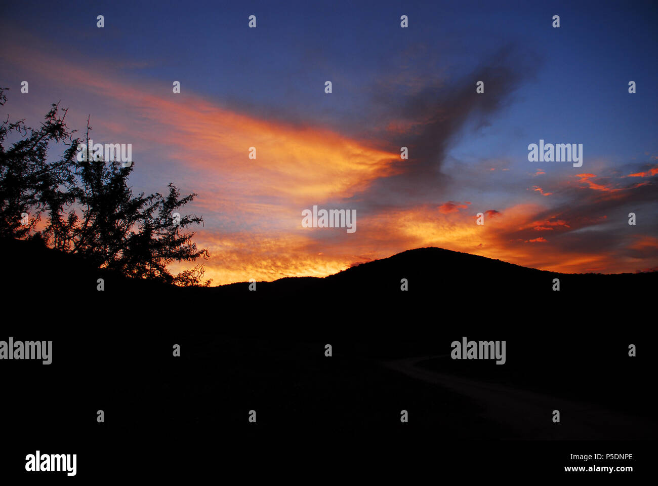 A stunning safari sunset in the South African wilderness creates an amazing background for any media presentation. - Stock Image