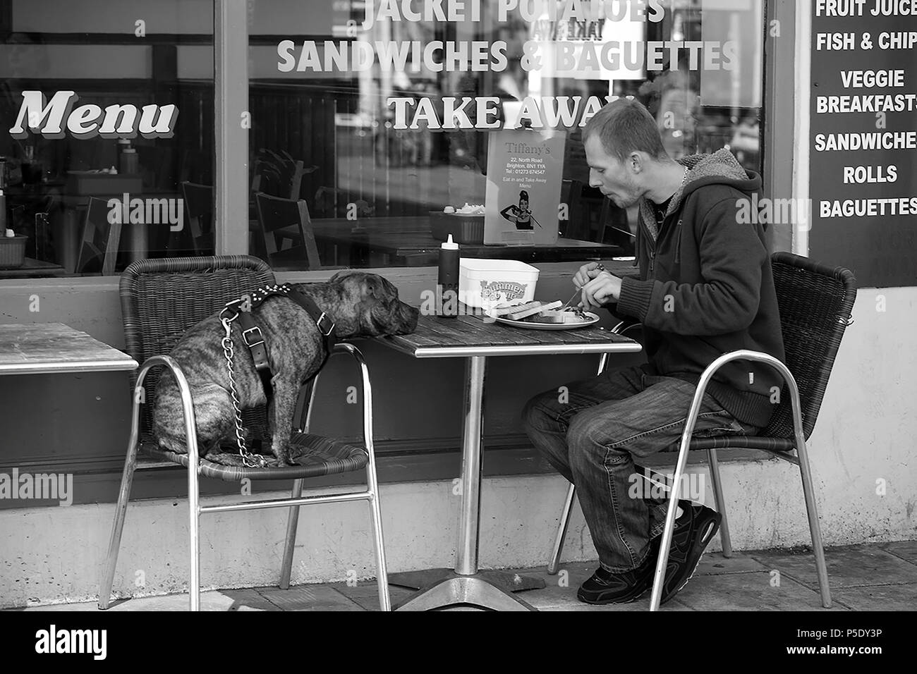 One man and his dog: Breakfast at Tiffany's, Regent Street, Brighton, East Sussex, England, UK.  Black and white version. - Stock Image
