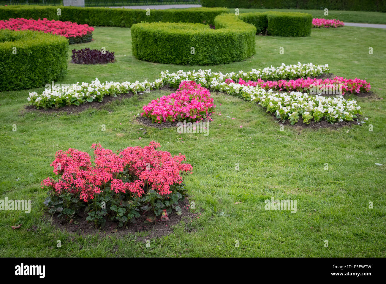 Flowerbed with various flowers, hedges and green meadow in Volksgarten, Vienna (Austria) - Stock Image