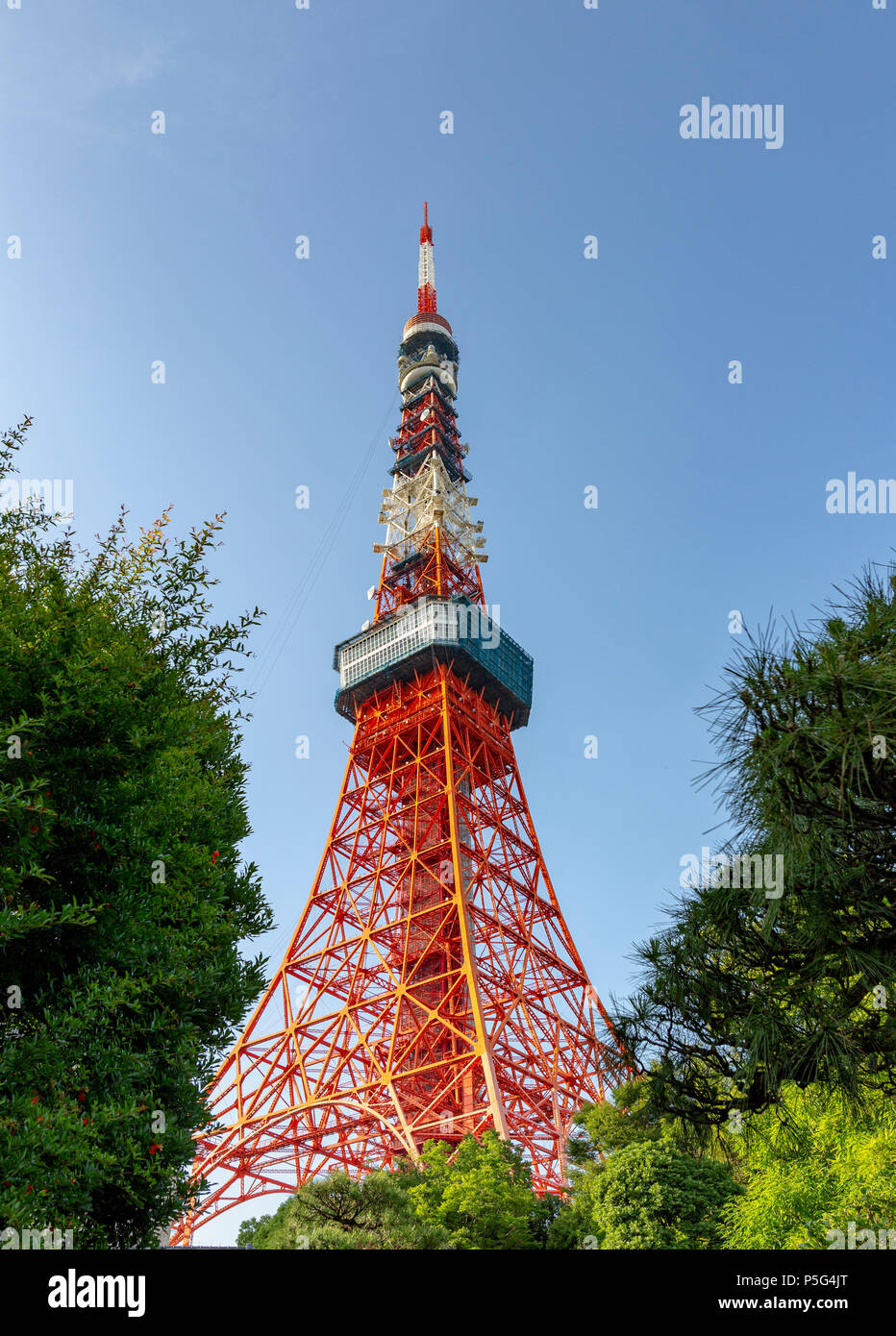 Tokyo Tower in downtown Tokyo, Japan, Asia - Stock Image